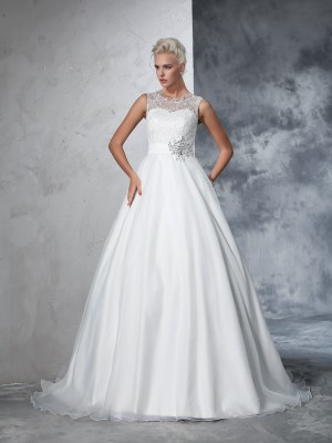 Ball Gown Sheer Neck Net Lace Chapel Train Wedding Gown