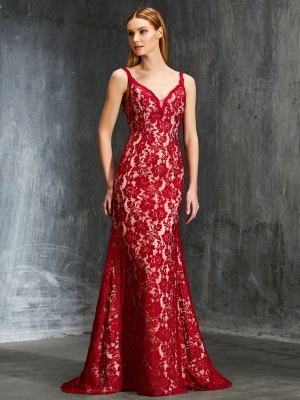Sheath Spaghetti Straps Sleeveless Sweep/Brush Train Applique Lace Gowns