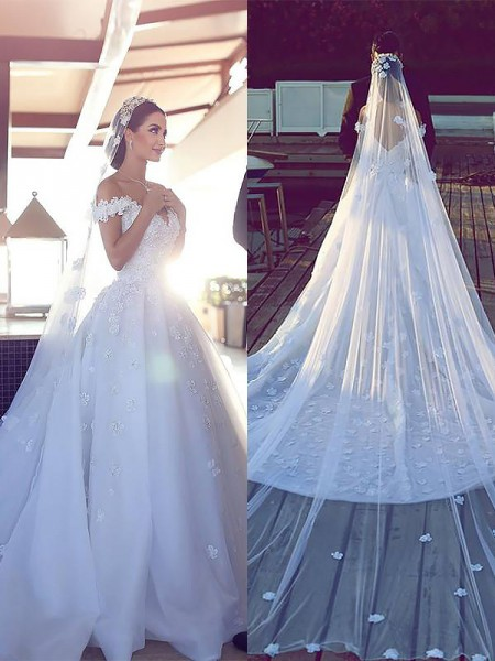 Ball Gown Tulle V-neck Chapel Train Wedding Dress